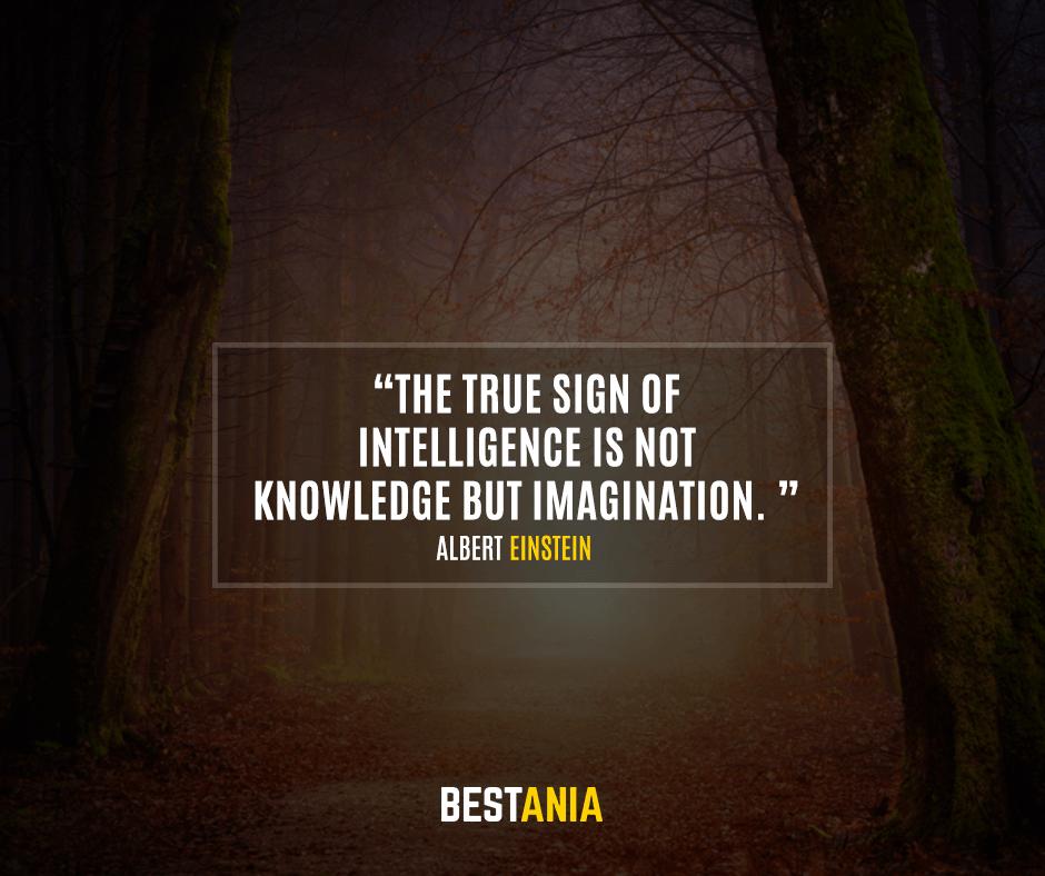 The true sign of intelligence is not knowledge but imagination. Albert Einstein