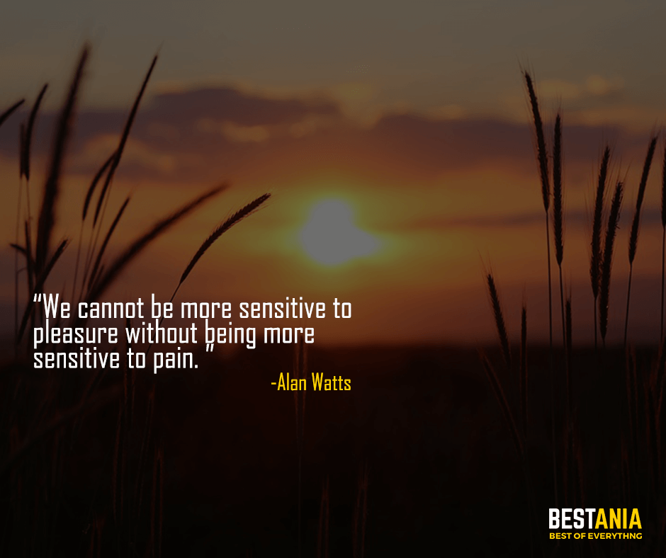 We cannot be more sensitive to pleasure without being more sensitive to pain. Alan Watts