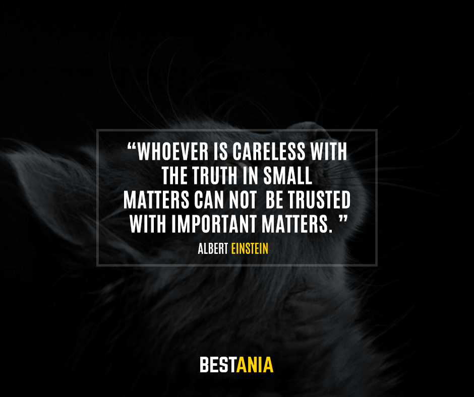 Whoever is careless with the truth in small matters cannot be trusted with important matters. Albert Einstein
