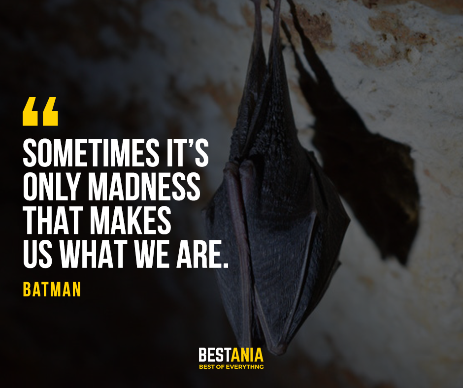 """""""Sometimes it's only madness that makes us what we are."""" – Batman"""