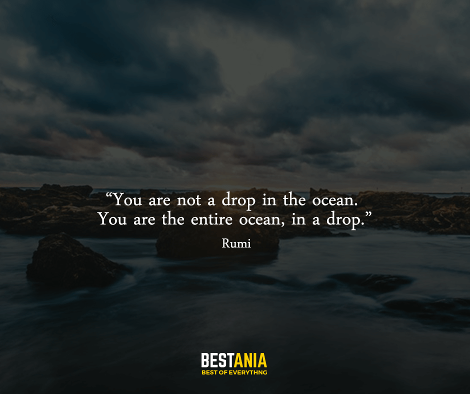 "You are not a drop in the ocean. You are the entire ocean, in a drop. ""Rumi"""
