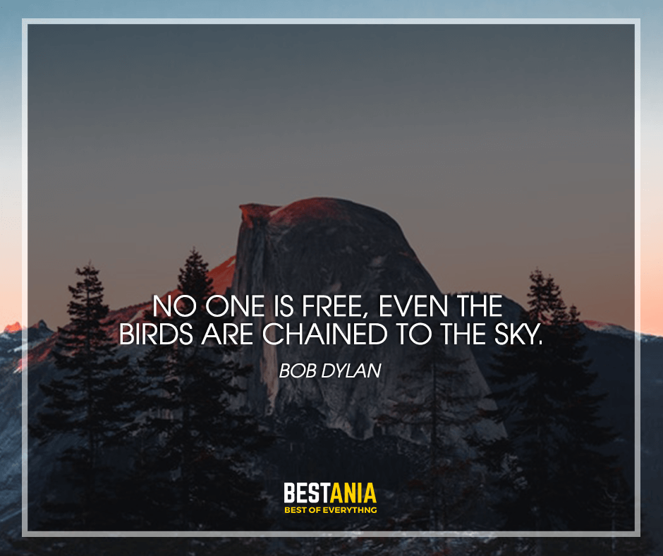 "No one is free, even the birds are chained to the sky. ""Bob Dylan"""