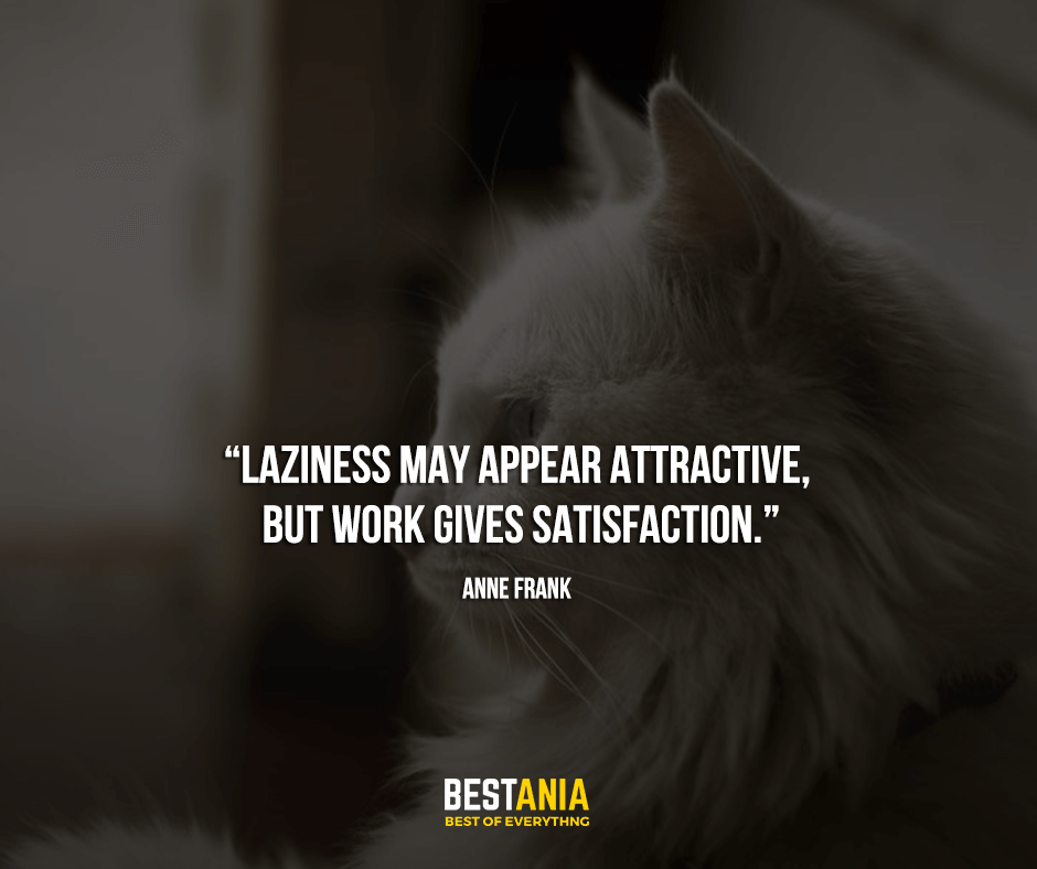 """""""Laziness may appear attractive, but work gives satisfaction."""" Anne Frank"""