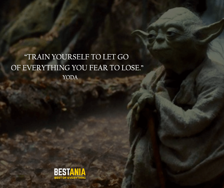 "Train yourself to let go of everything you fear to lose. ""Yoda"""