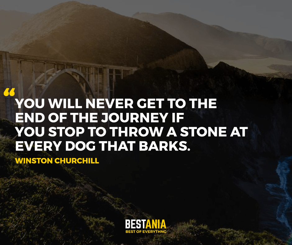 You will never get to the end of the journey if you stop to throw a stone at every dog that barks. Winston Churchill