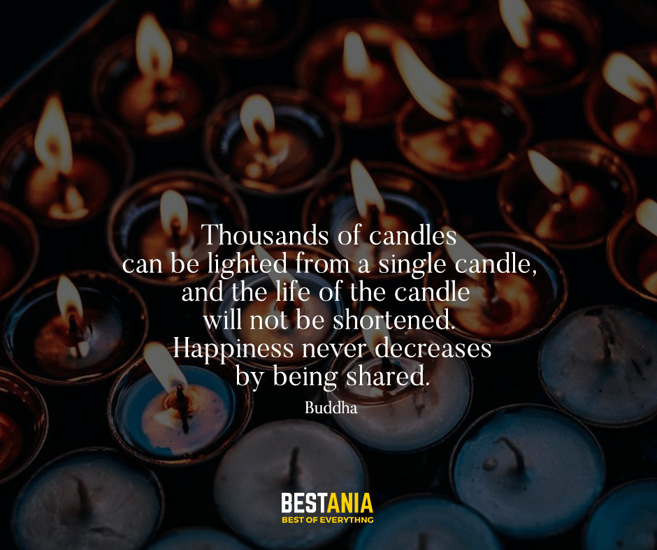 Thousands of candles can be lighted from a single candle, and the life of the candle will not be shortened. Happiness never decreases by being shared. Buddha