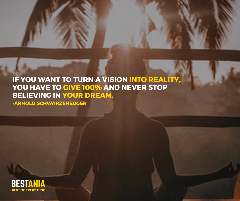 Vision Quote,,,,If you want to turn a vision into reality, you have to give 100% and never stop believing in your dream. Arnold Schwarzenegger