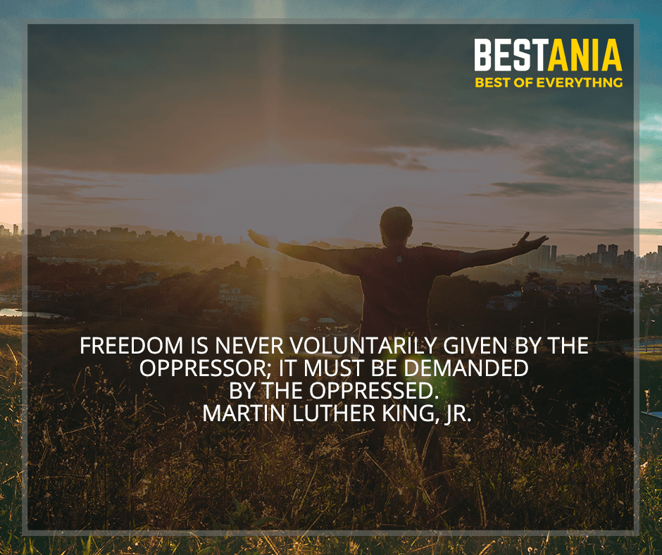 """Freedom is never voluntarily given by the oppressor; it must be demanded by the oppressed"" Martin Luther King, Jr."
