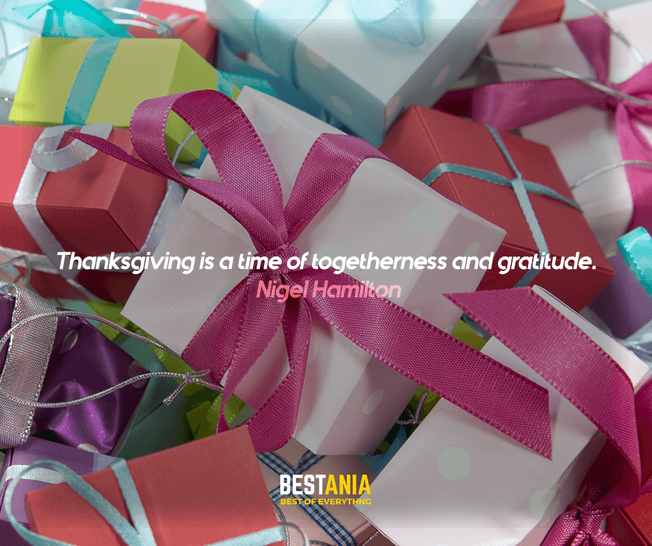 """""""Thanksgiving is a time of togetherness and gratitude."""" Nigel Hamilton"""
