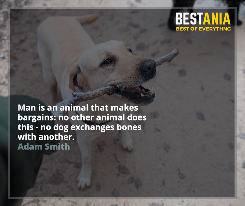 Man is an animal that makes bargains: no other animal does this - no dog exchanges bones with another. Adam Smith