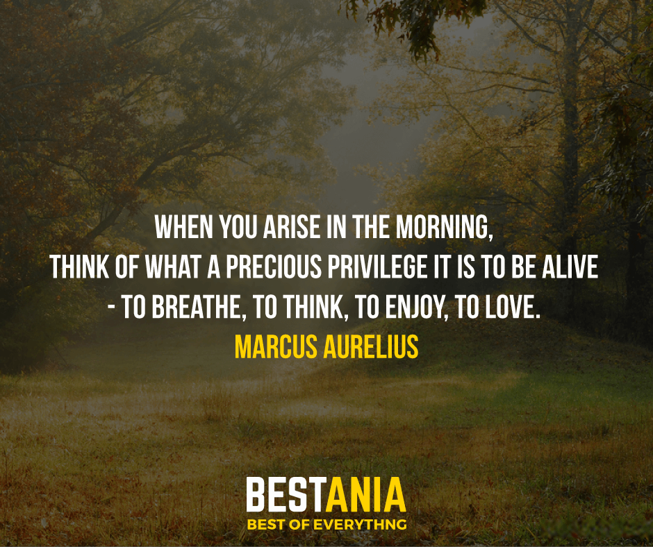 """WHEN YOU ARISE IN THE MORNING, THINK OF WHAT A PRECIOUS PRIVILEGE IT IS TO BE ALIVE - TO BREATHE, TO THINK, TO ENJOY, TO LOVE.""  MARCUS AURELIUS"