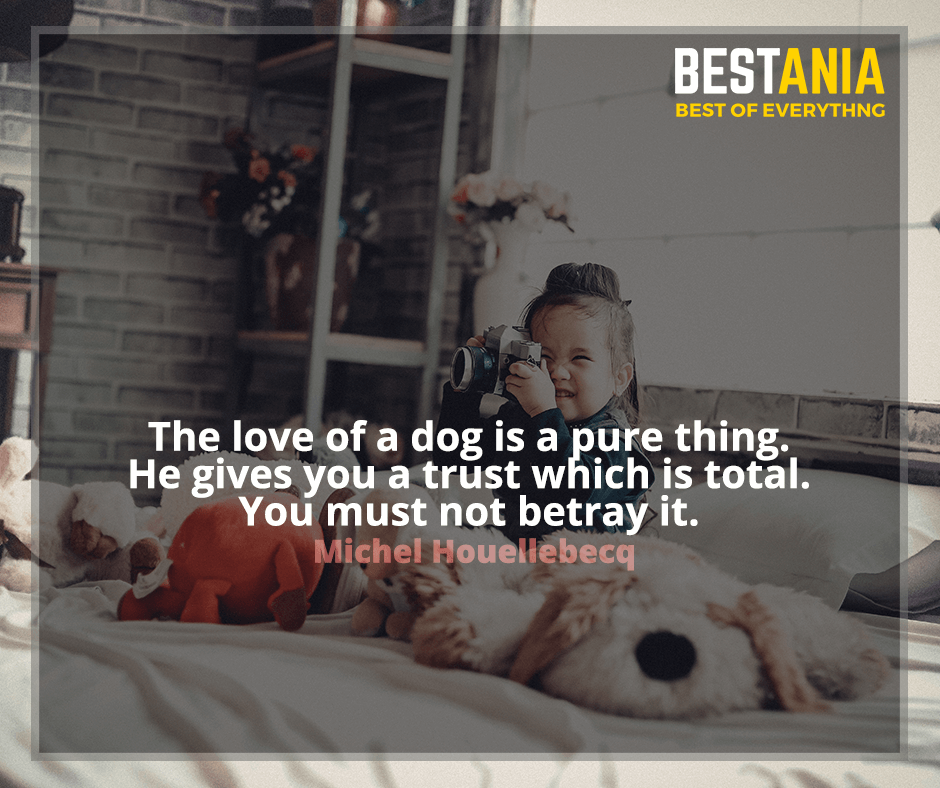 The love of a dog is a pure thing. He gives you a trust which is total. You must not betray it. Michel Houellebecq