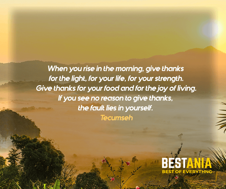 """""""When you rise in the morning, give thanks for the light, for your life, for your strength. Give thanks for your food and for the joy of living. If you see no reason to give thanks, the fault lies in yourself."""" Tecumseh"""
