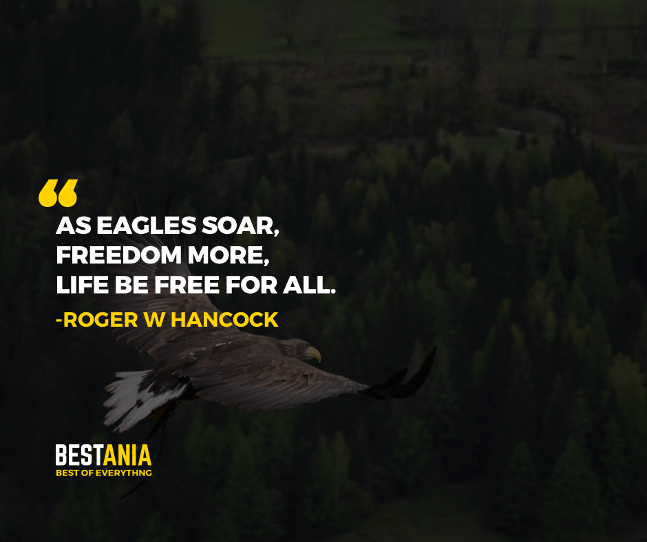 """AS EAGLES SOAR, FREEDOM MORE, LIFE IS FREE FOR ALL."" ROGER W HANCOCK"