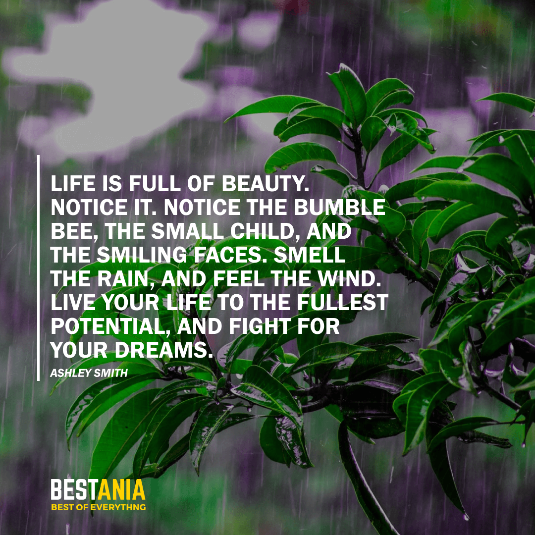 """LIFE IS FULL OF BEAUTY. NOTICE IT. NOTICE THE BUMBLE BEE, THE SMALL CHILD, AND THE SMILING FACES. SMELL THE RAIN, AND FEEL THE WIND. LIVE YOUR LIFE TO THE FULLEST POTENTIAL, AND FIGHT FOR YOUR DREAMS."" ASHLEY SMITH"