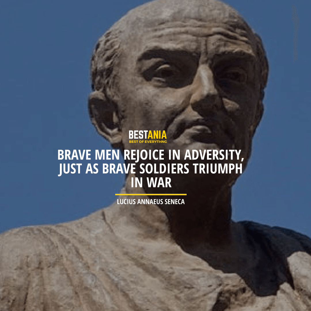 """BRAVE MEN REJOICE IN ADVERSITY, JUST AS BRAVE SOLDIERS TRIUMPH IN WAR.""  LUCIUS ANNAEUS SENECA"