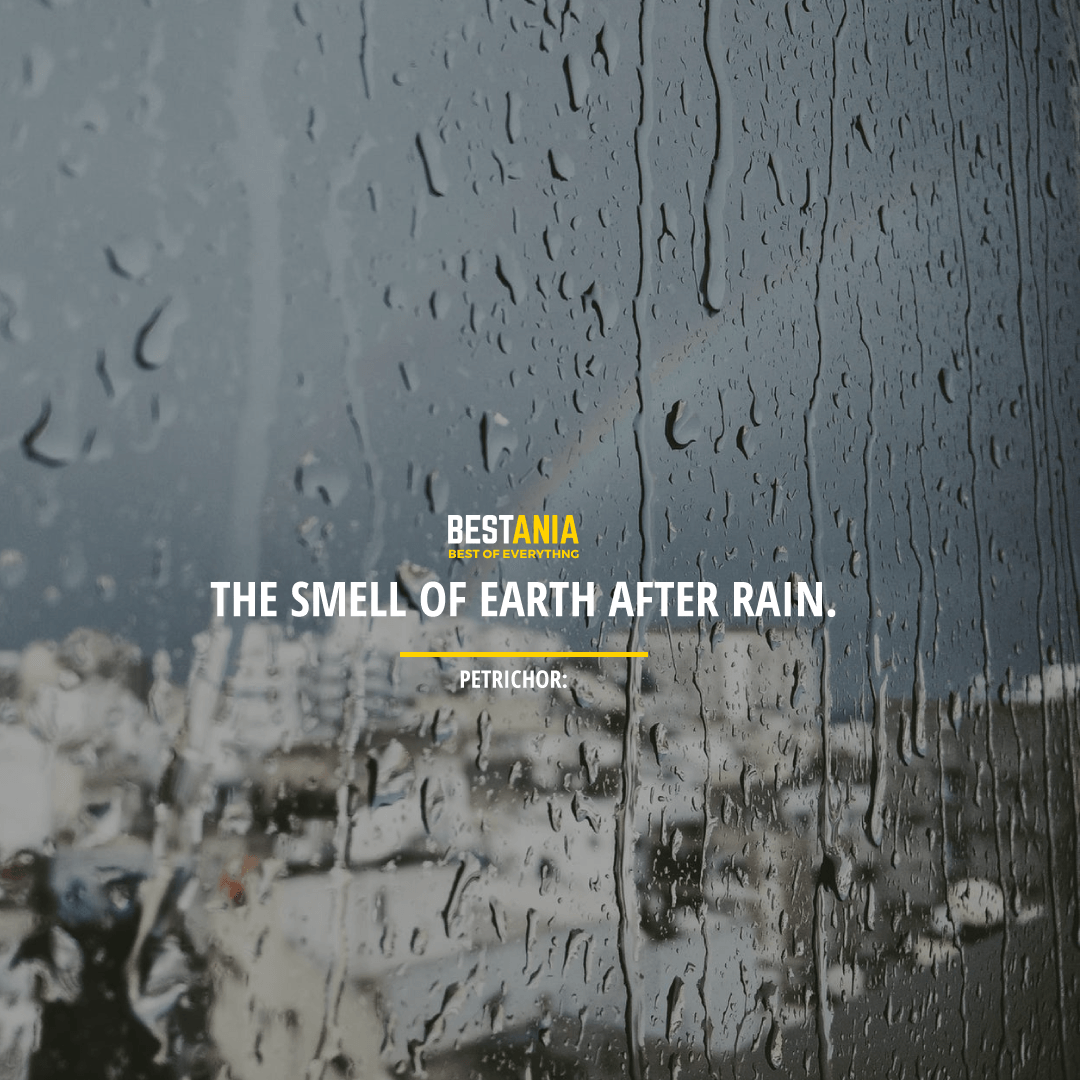 """THE SMELL OF EARTH AFTER RAIN."" PETRICHOR:"