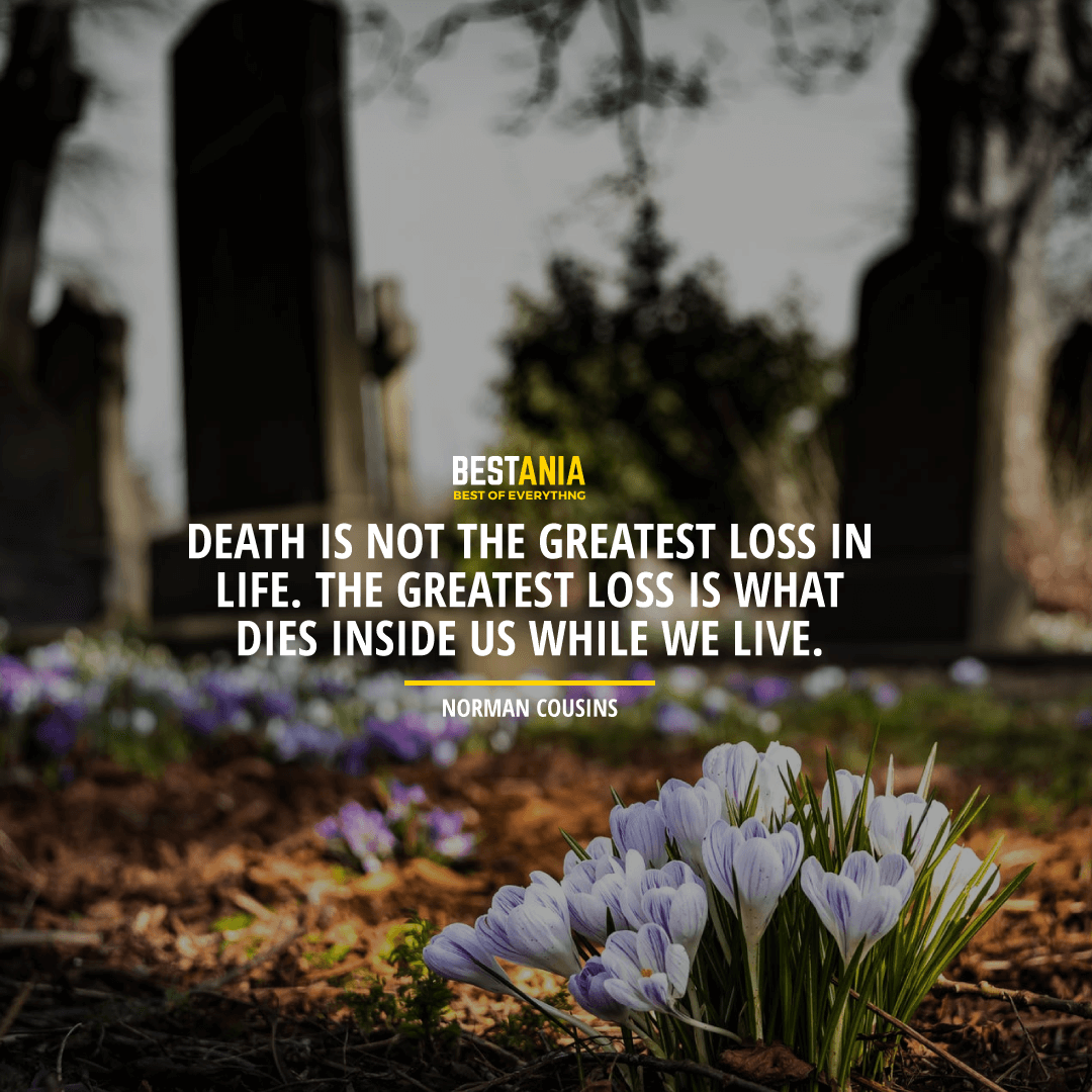 """DEATH IS NOT THE GREATEST LOSS IN LIFE. THE GREATEST LOSS IS WHAT DIES INSIDE US WHILE WE LIVE."" NORMAN COUSINS"