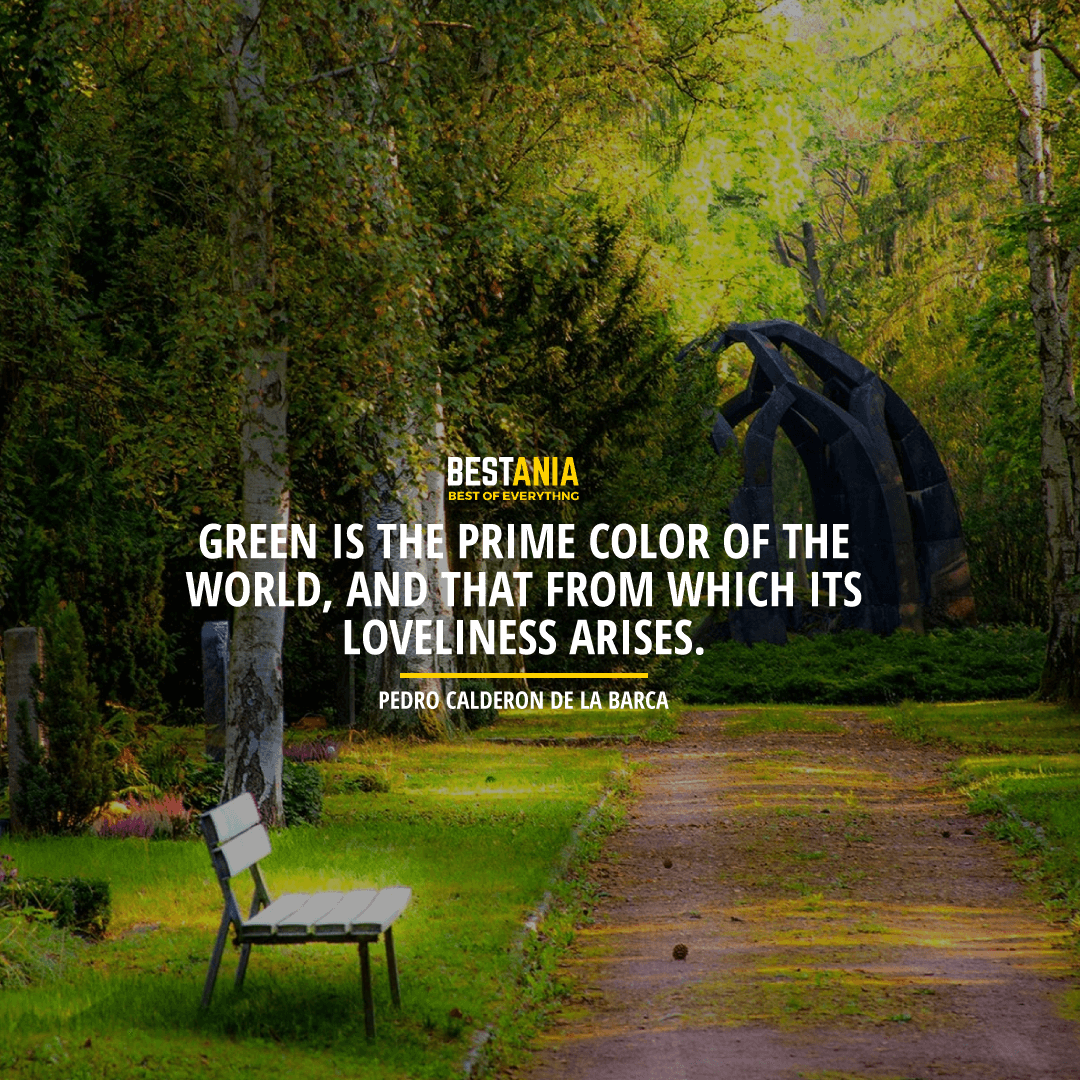 """GREEN IS THE PRIME COLOR OF THE WORLD, AND THAT FROM WHICH ITS LOVELINESS ARISES."" PEDRO CALDERON DE LA BARCA"