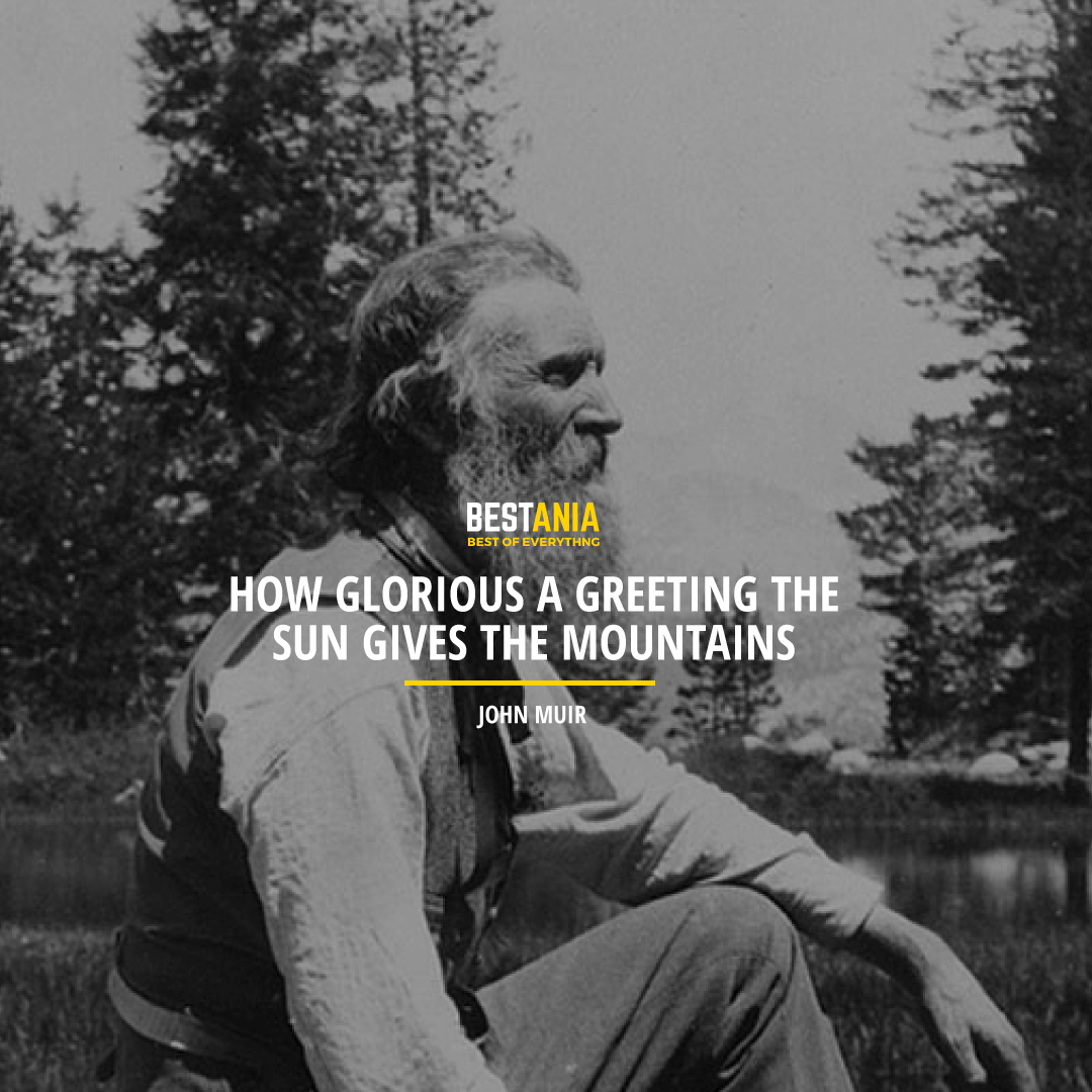 """""""HOW GLORIOUS A GREETING THE SUN GIVES THE MOUNTAINS!"""" JOHN MUIR"""