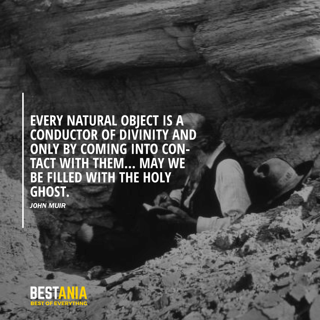 """""""EVERY NATURAL OBJECT IS A CONDUCTOR OF DIVINITY AND ONLY BY COMING INTO CONTACT WITH THEM... MAY WE BE FILLED WITH THE HOLY GHOST."""" JOHN MUIR"""