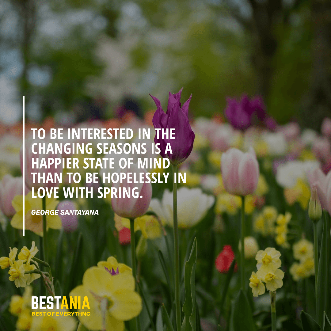 """TO BE INTERESTED IN THE CHANGING SEASONS IS A HAPPIER STATE OF MIND THAN TO BE HOPELESSLY IN LOVE WITH SPRING."" GEORGE SANTAYANA"
