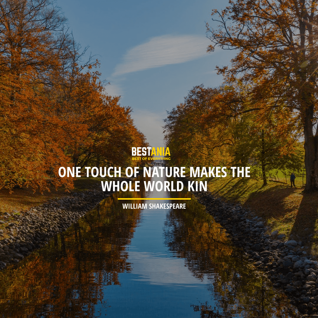 """ONE TOUCH OF NATURE MAKES THE WHOLE WORLD KIN."" WILLIAM SHAKESPEARE"