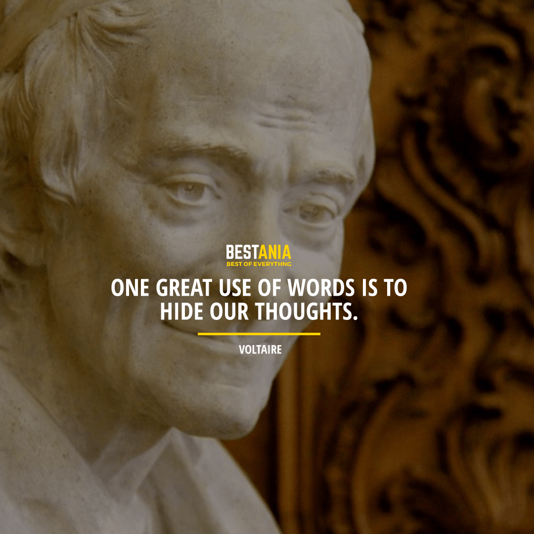 """ONE GREAT USE OF WORDS IS TO HIDE OUR THOUGHTS.""  VOLTAIRE"