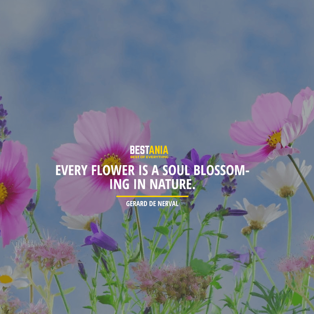 """EVERY FLOWER IS A SOUL BLOSSOMING IN NATURE."" GERARD DE NERVAL"