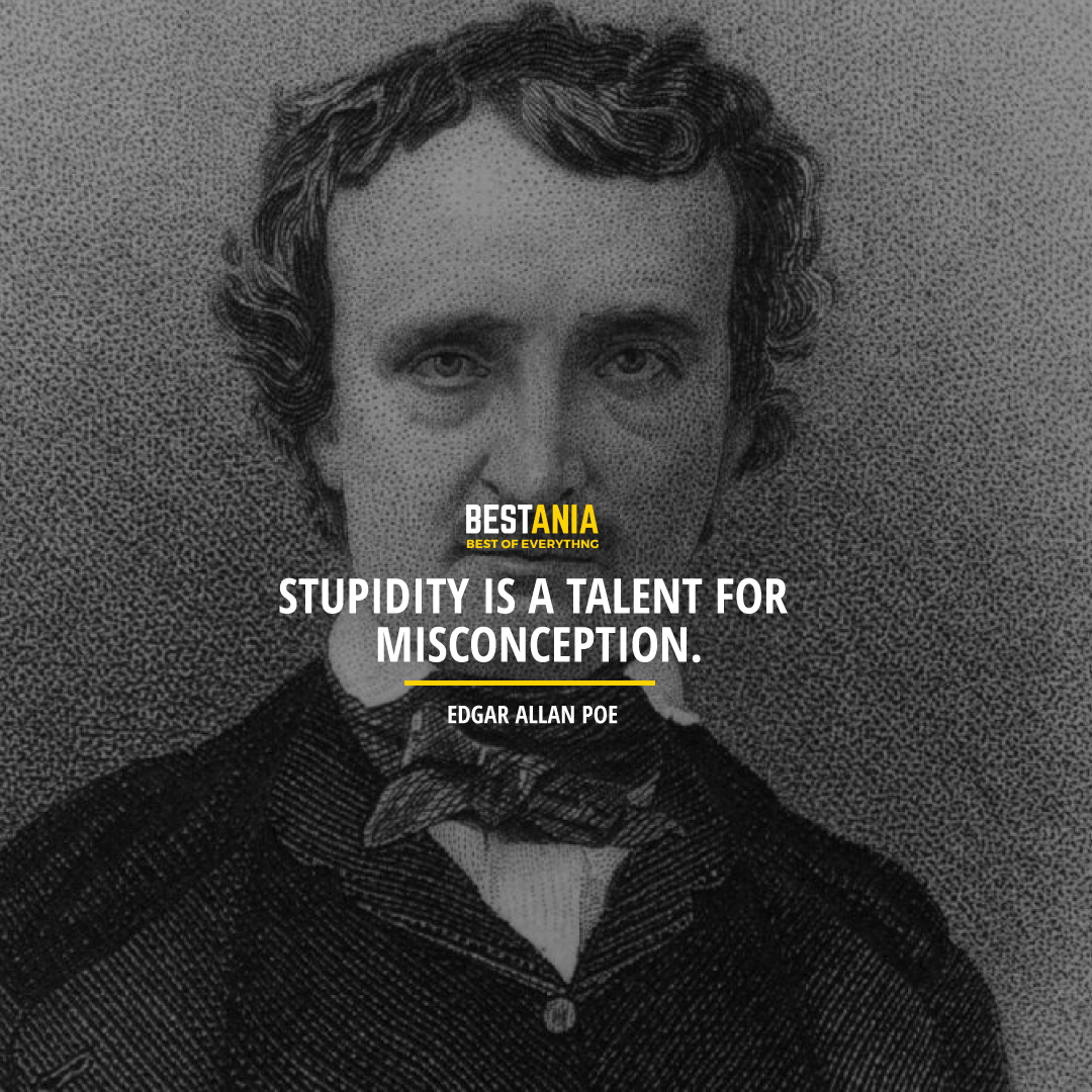 """""""STUPIDITY IS A TALENT FOR MISCONCEPTION.""""  EDGAR ALLAN POE"""