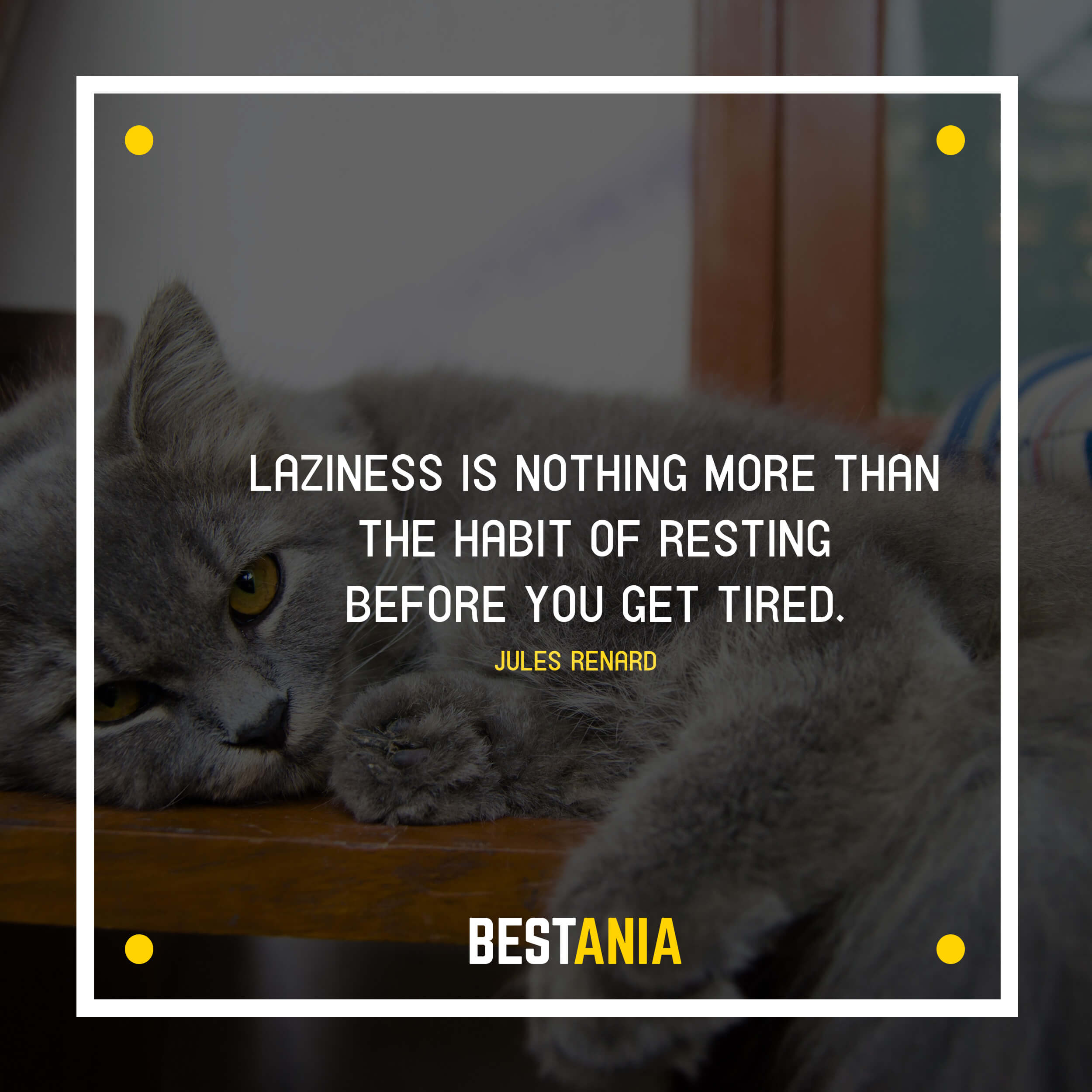"""LAZINESS IS NOTHING MORE THAN THE HABIT OF RESTING BEFORE YOU GET TIRED.""  JULES RENARD"