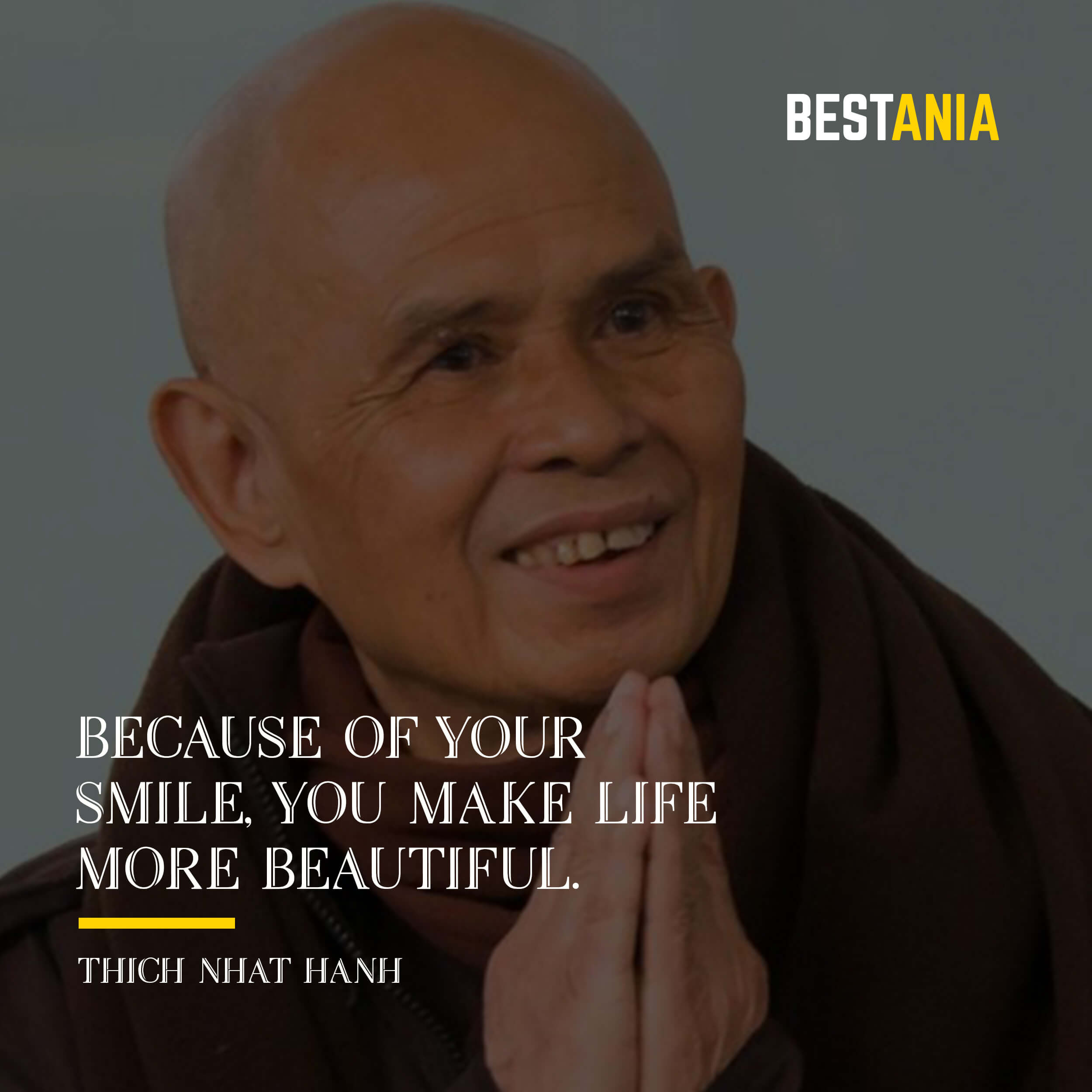 """""""BECAUSE OF YOUR SMILE, YOU MAKE LIFE MORE BEAUTIFUL.""""  THICH NHAT HANH"""