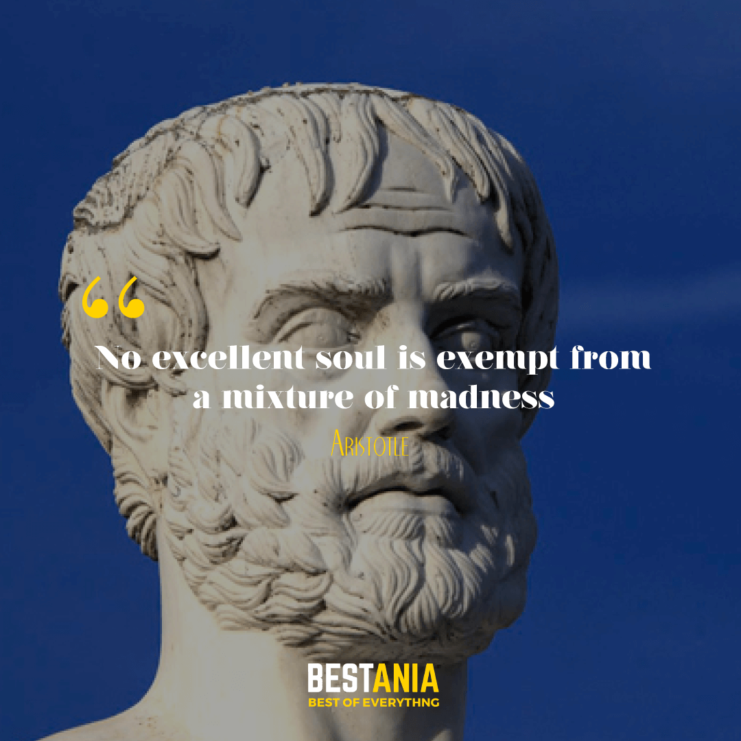 No excellent soul is exempt from a mixture of madness. Aristotle