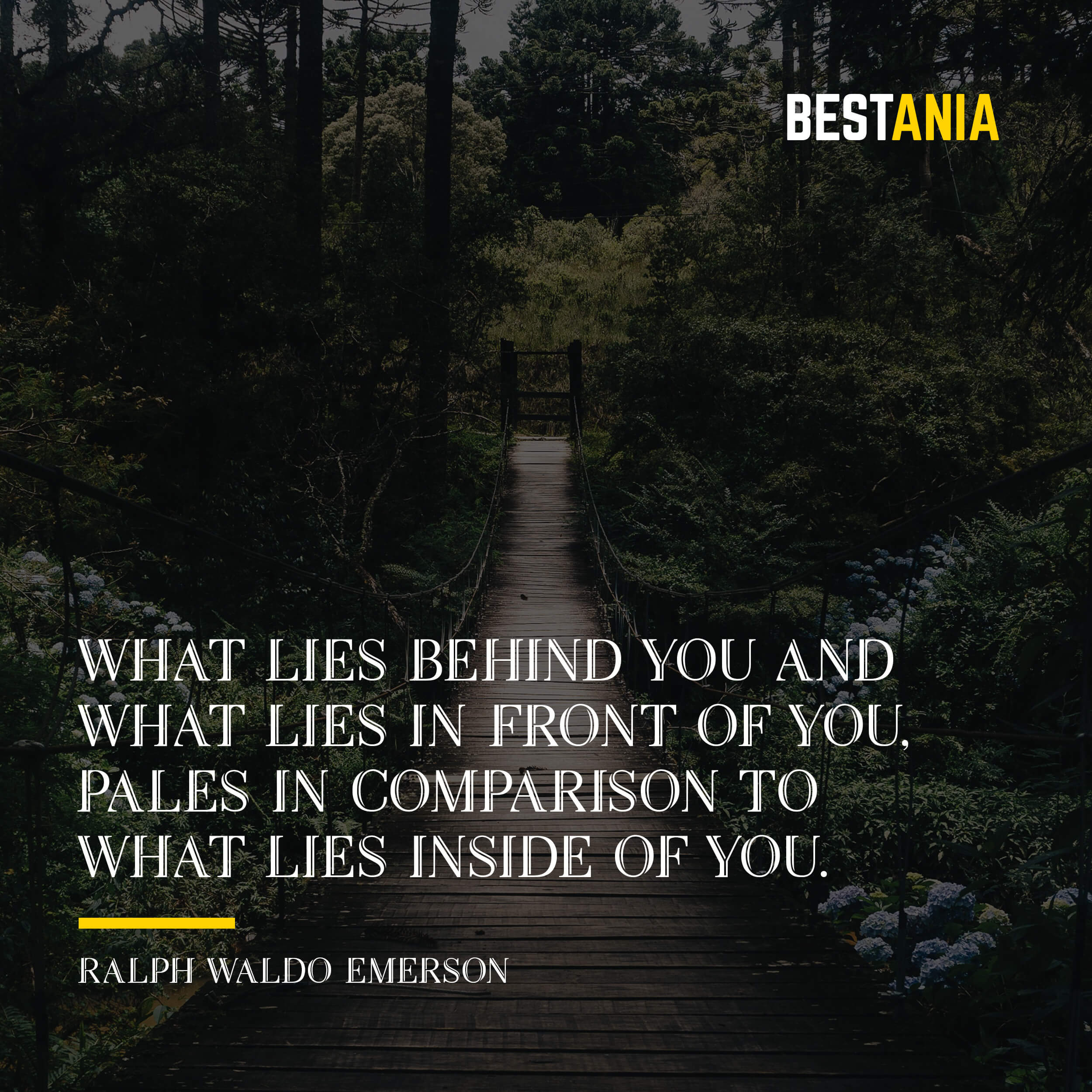 """WHAT LIES BEHIND YOU AND WHAT LIES IN FRONT OF YOU, PALES IN COMPARISON TO WHAT LIES INSIDE OF YOU."" RALPH WALDO EMERSON"