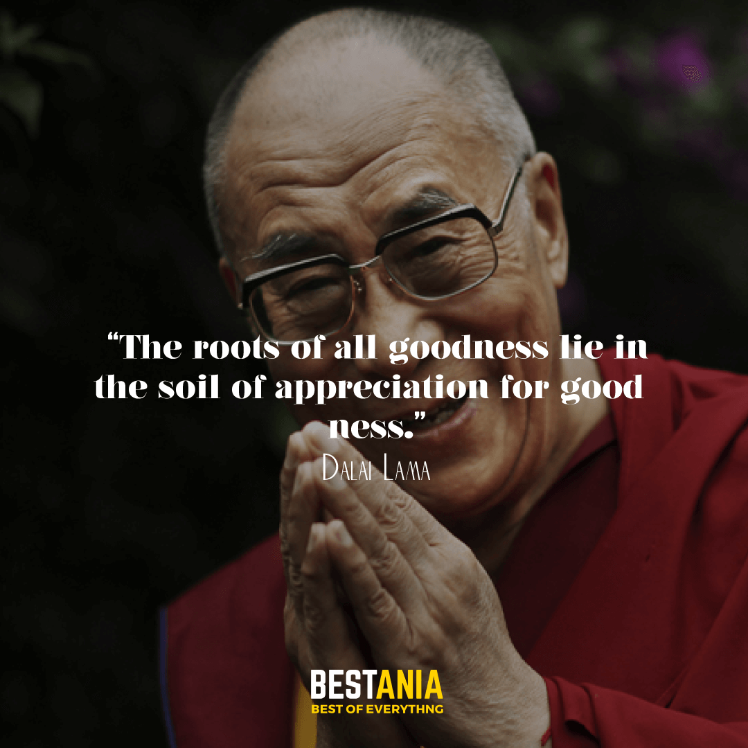 """The roots of all goodness lie in the soil of appreciation for goodness."" —Dalai Lama"
