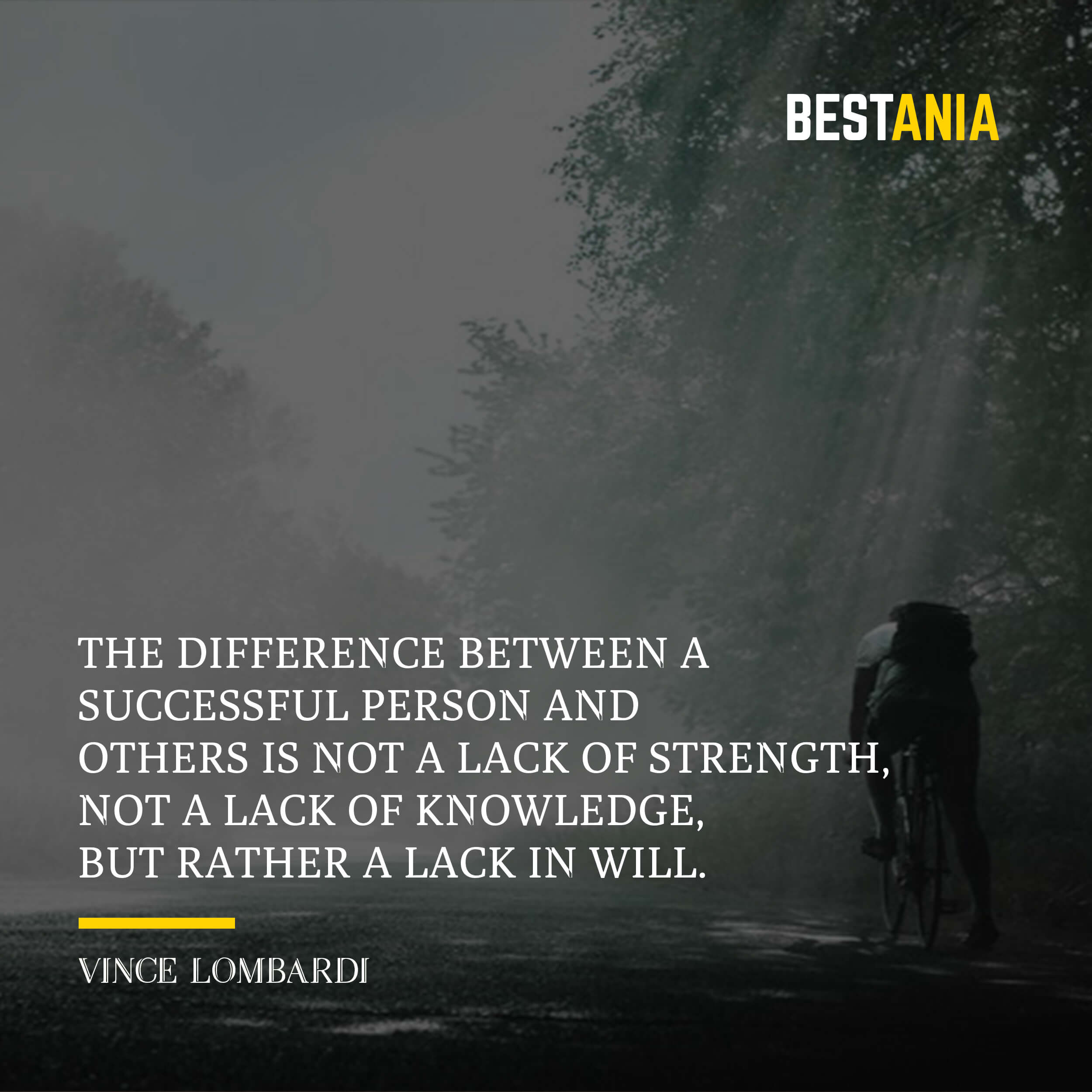 The difference between a successful person and others is not a lack of strength, not a lack of knowledge, but rather a lack in will. – Vince Lombardi