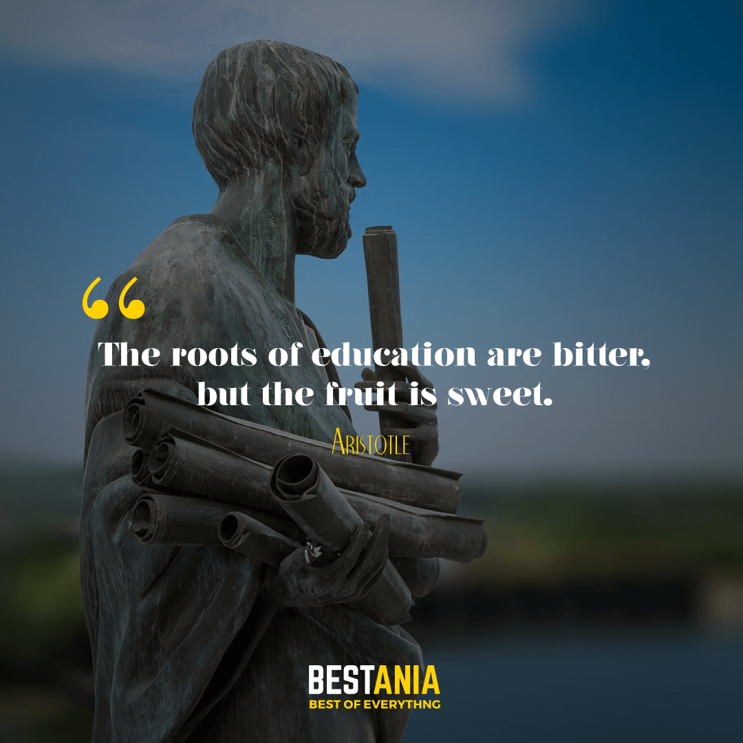 The roots of education are bitter, but the fruit is sweet. Aristotle