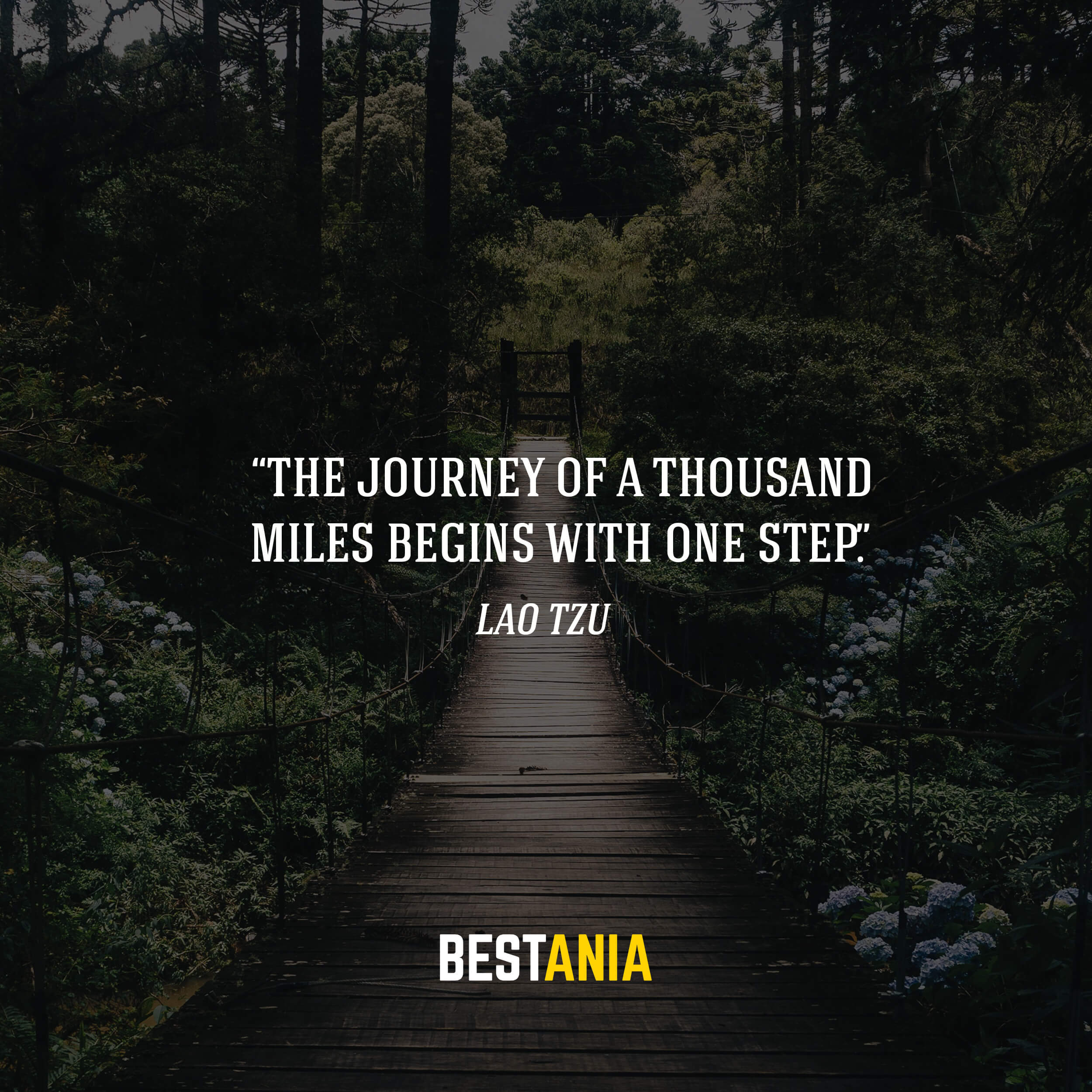 """""""The journey of a thousand miles begins with one step."""" – Lao Tzu"""