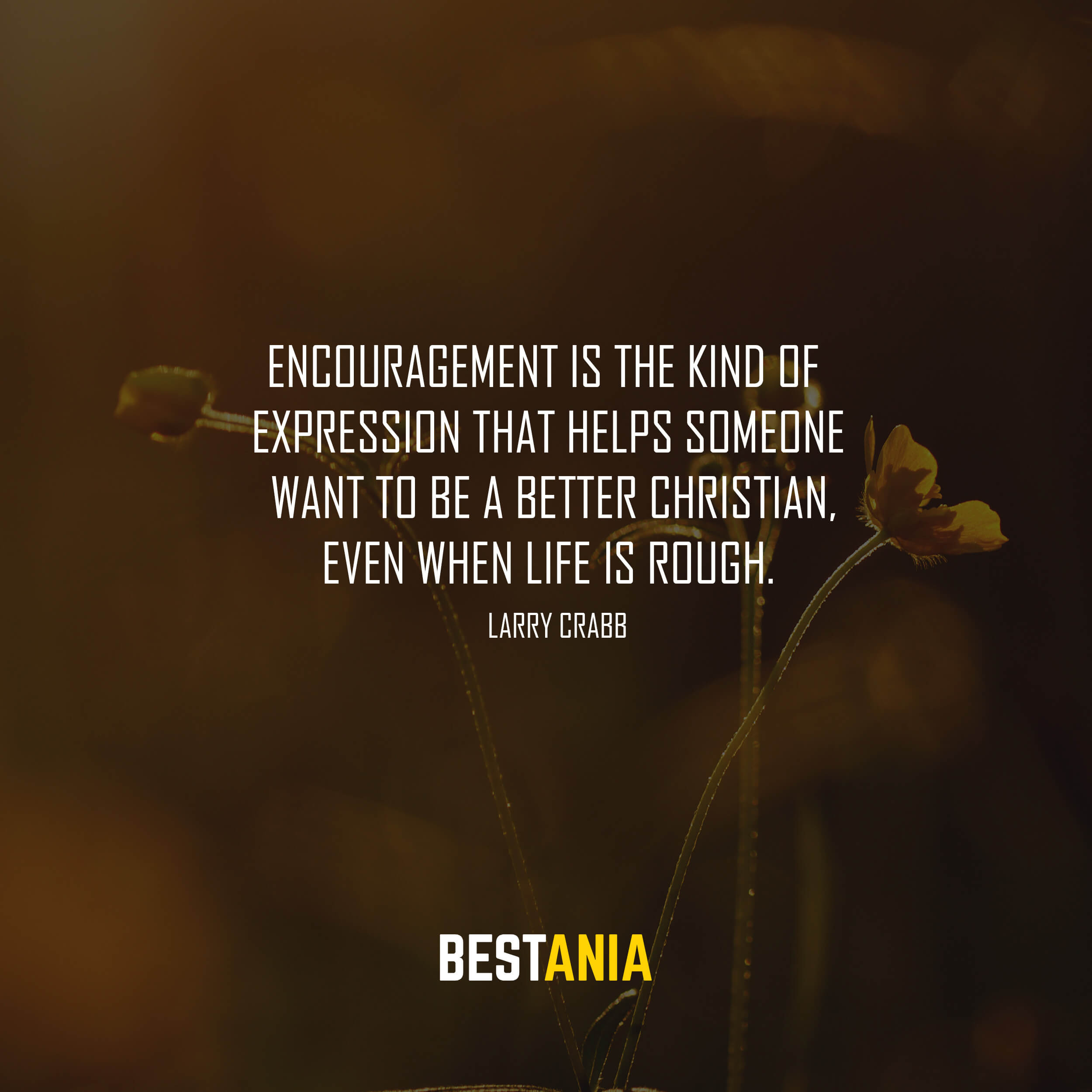 Encouragement is the kind of expression that helps someone want to be a better Christian, even when life is rough. Larry Crabb