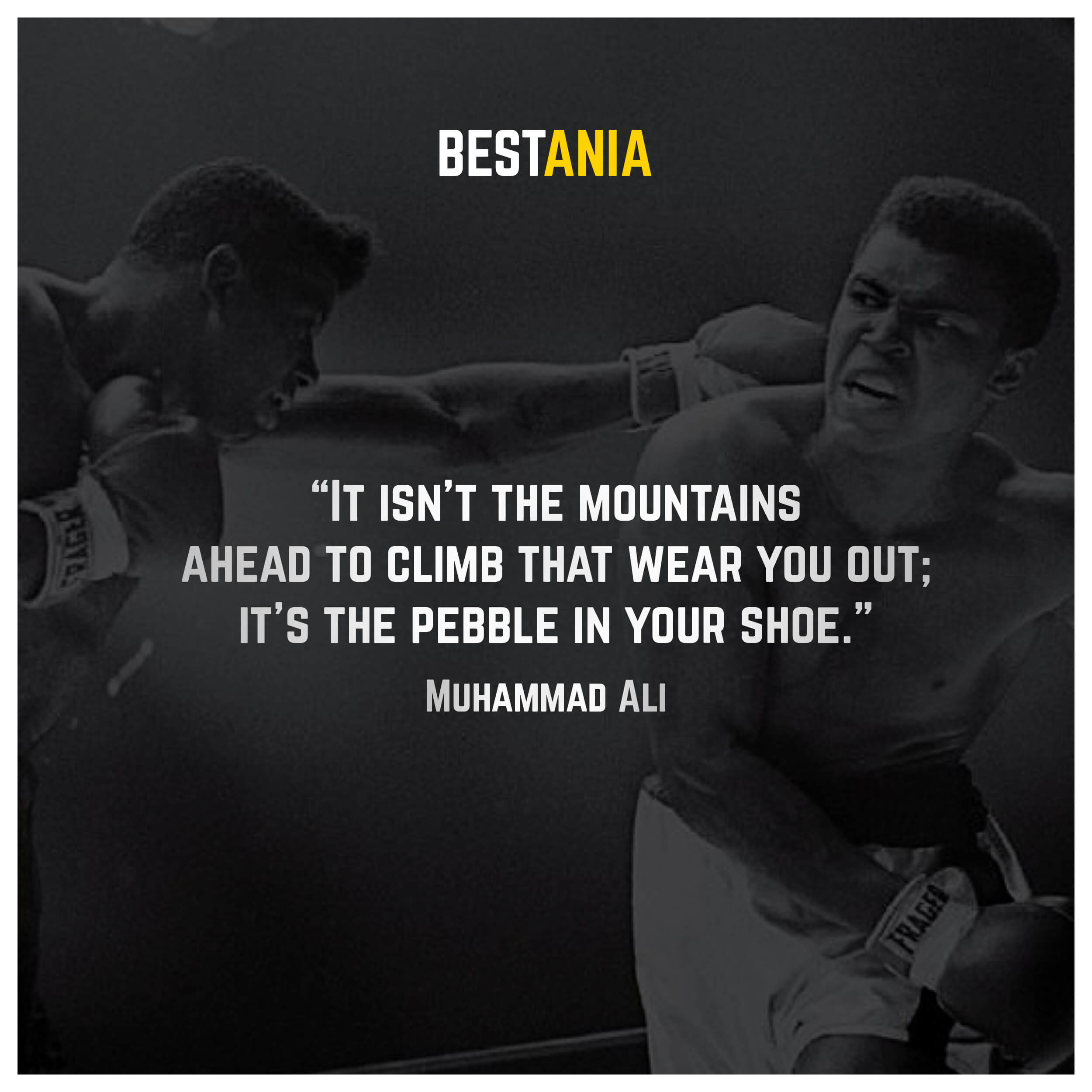 """It isn't the mountains ahead to climb that wear you out; it's the pebble in your shoe."" – Muhammad Ali"
