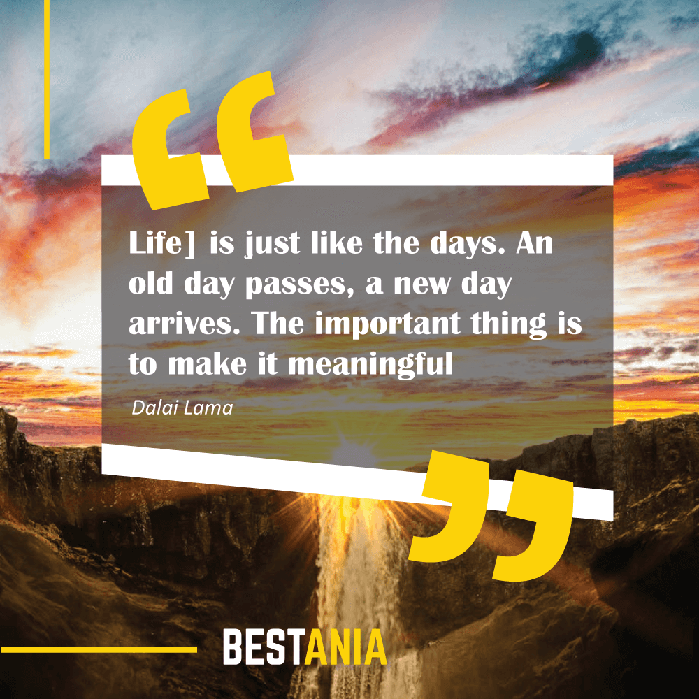 """[Life] is just like the days. An old day passes, a new day arrives. The important thing is to make it meaningful."" Dalai Lama"