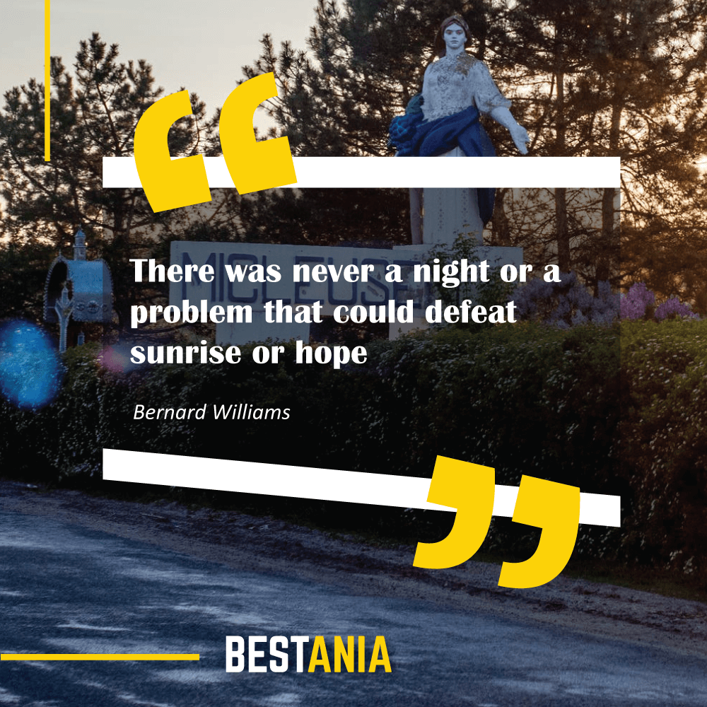 """There was never a night or a problem that could defeat sunrise or hope."" Bernard Williams"