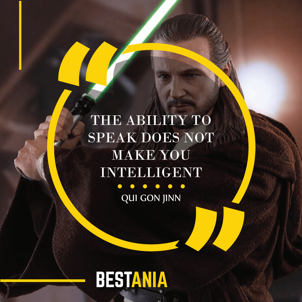 """""""THE ABILITY TO SPEAK DOES NOT MAKE YOU INTELLIGENT."""" – QUI GON JINN"""