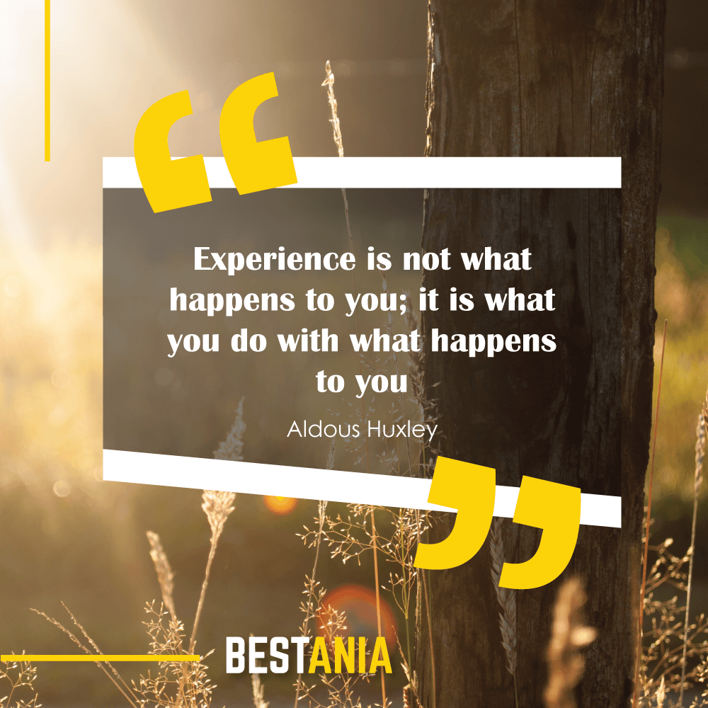 """Experience is not what happens to you; it is what you do with what happens to you."" - Aldous Huxley"