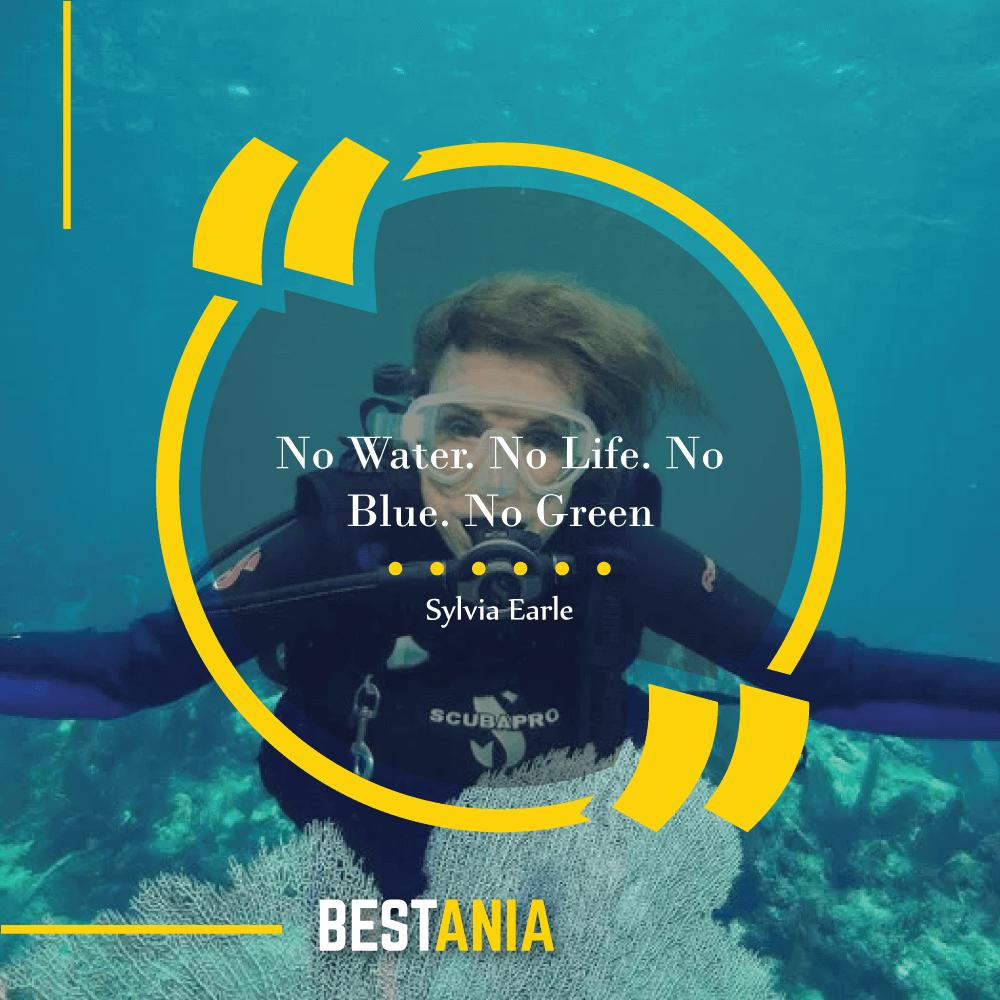 No Water. No Life. No Blue. No Green. – Sylvia Earle